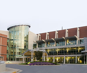 Augusta Medical Group