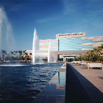 General Adult Neurologist | Cleveland Clinic Florida - West