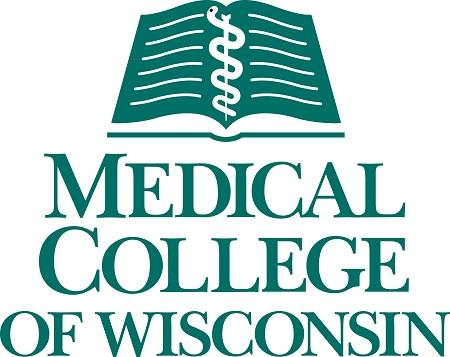 ACADEMIC GERIATRIC PSYCHIATRY POSITION, MEDICAL COLLEGE OF WISCONSIN, MILWAUKEE, WISCONSIN: EMPLOYED OPPORTUNITY - Medical College of Wisconsin